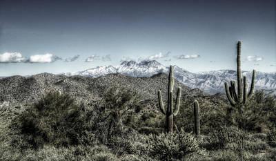 Photograph - Winter In The Desert by Saija  Lehtonen