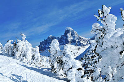 National Parks Photograph - Winter In The Tetons by Greg Norrell