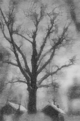 Photograph - Winter Landscape by Michael Goyberg