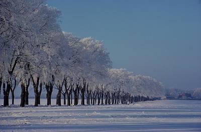 Winter Landscape Near Odense Art Print by Sisse Brimberg