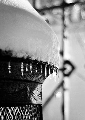 Photograph - Winter Love by Rebecca Sherman