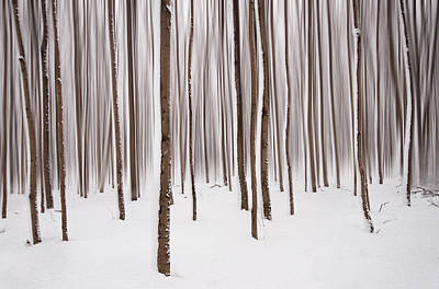 Winter Art Print by Mircea Costina Photography