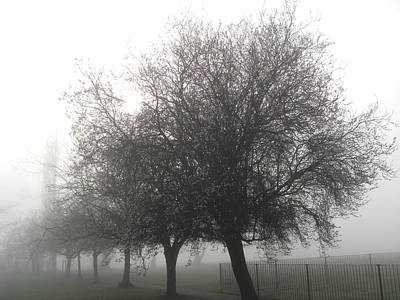Photograph - Winter Mist by Chris Day