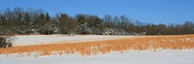 Photograph - Winter On The Tall Grass Prairie by David Dunham