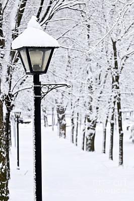 Winter Roads Photograph - Winter Park by Elena Elisseeva