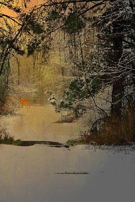 Art Print featuring the photograph Winter Path by Mary Timman
