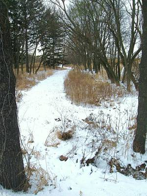 Photograph - Winter Path by Todd Sherlock