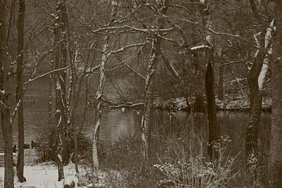 Photograph - Winter Pond by Christopher Kirby