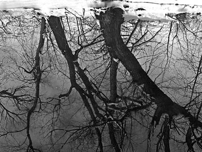 Photograph - Winter Reflection by David Pantuso