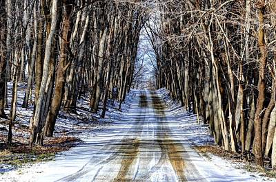 Photograph - Winter Road by Rodney Campbell