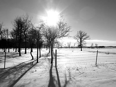 Photograph - Winter Shadows by Leanna Lomanski