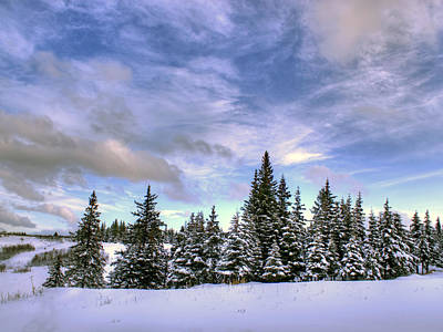 Art Print featuring the photograph Winter Sky by Michele Cornelius