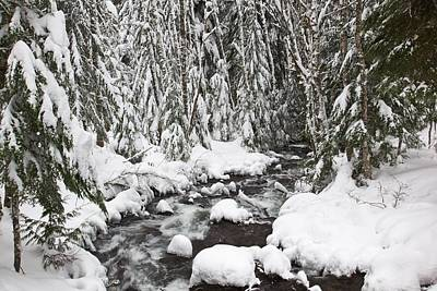 Winter Snow Along Still Creek In Mt Art Print by Craig Tuttle