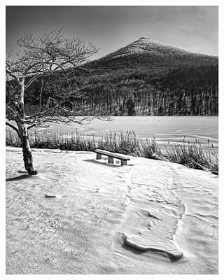 Photograph - Winter Solitude - Virginia by Steve Hurt