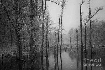 Photograph - Winter Storm by David Waldrop