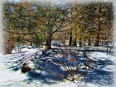 Photograph - Winter Sun by Joan  Minchak