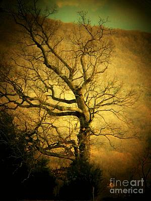 Photograph - Winter Tree by Joyce Kimble Smith