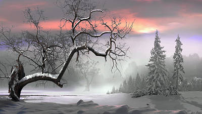 Photograph - Winter Trees by Igor Zenin