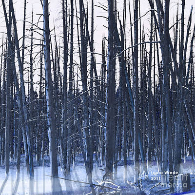 Digital Art - Winter Trees by Artist and Photographer Laura Wrede