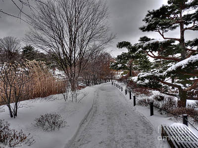 Photograph - Winter Walk In The Garden by David Bearden
