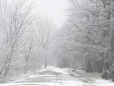 Winter Walkway Art Print