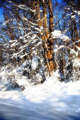 Winter Wanderland Original by Michael Putnam