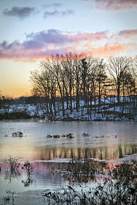 Mannequin Dresses Rights Managed Images - Winter Wetlands Royalty-Free Image by Rob Travis