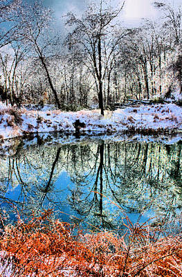 Photograph - Winter Wonder by Kristin Elmquist