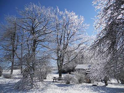 Art Print featuring the photograph Winter Wonderland  by Diannah Lynch