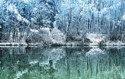 Photograph - Winter Wonderland by Jutta Maria Pusl