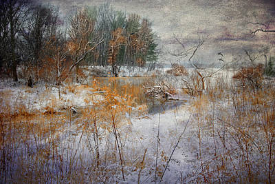 Art Print featuring the photograph Winter Wonderland by Mary Timman