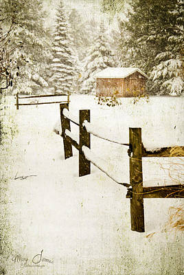 Art Print featuring the digital art Winter's Beauty by Mary Timman