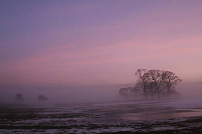 Photograph - Winters Eve by David Grant