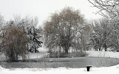 Photograph - Winter's Pond by Elizabeth Winter