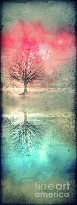 Aging Digital Art - Winter's Reds And Blues by Tara Turner