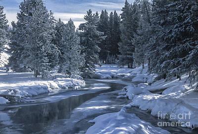 Photograph - Winter's Splendor by Sandra Bronstein