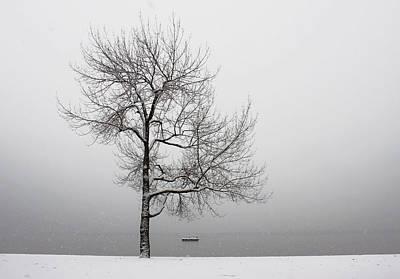 Wintertrees Art Print by Joana Kruse