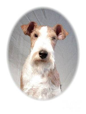 Fox Terrier Digital Art - Wire Fox Terrier 291 by Larry Matthews