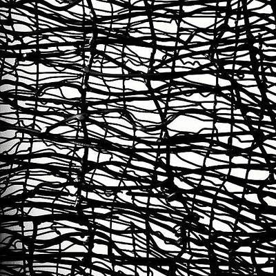 Blackandwhite Photograph - Wired by Julie Gebhardt