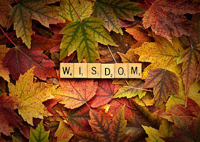 Photograph - Wisdom-autumn by  Onyonet  Photo Studios