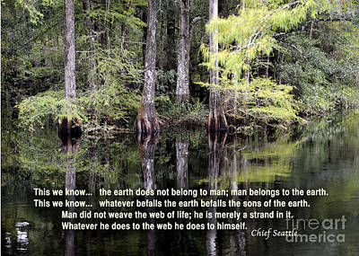 Photograph - wisdom from Chief Seattle by Nancy Greenland