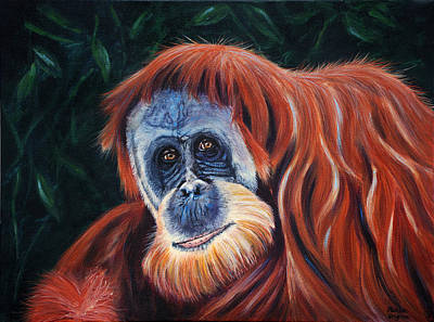 Endangered Wildlife Painting - Wise One - Orangutan Wildlife Painting by Michelle Wrighton