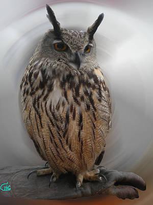 Wise Owl 3 Living In Spain Print by Colette V Hera  Guggenheim