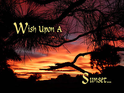 Photograph - Wish Upon A Sunset by Cindy Wright