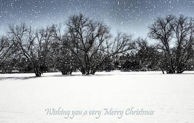 Photograph - Wishing You A Very Merry Christmas by Saija  Lehtonen