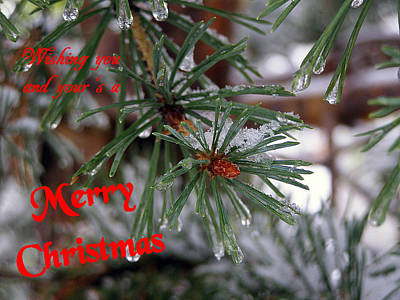 Photograph - Wishing You And Yours A Merry Christmas by DeeLon Merritt