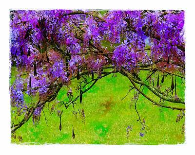 Wisteria Bower Art Print by Judi Bagwell