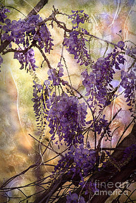 Wisteria Lane Art Print