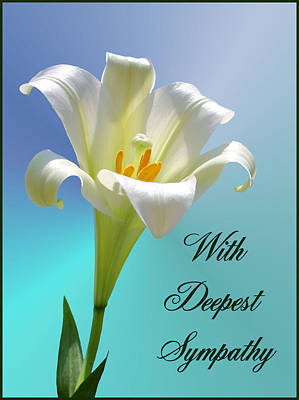 Photograph - With Deepest Sympathy by Kristin Elmquist