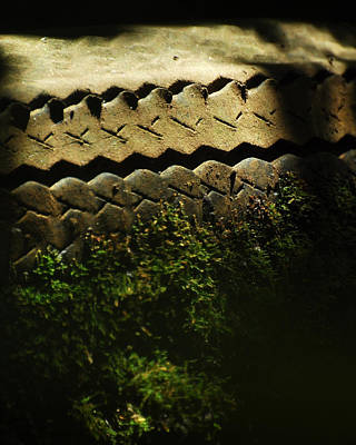 Photograph - With Impartial Tread by Rebecca Sherman